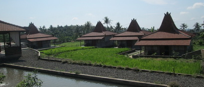 Traditional Villas in the paddy fields